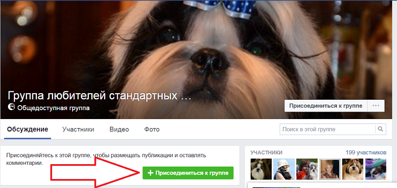 Как подписаться на сообщество фейсбук
